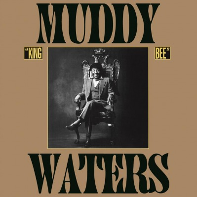 Muddy Waters Muddy Mississippi Waters Live Music On