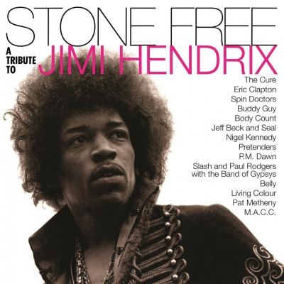 VARIOUS ARTISTS – STONE FREE (JIMI HENDRIX TRIBUTE)